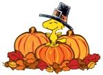 woodstock-thanksgiving-pumpkins-pilgrim